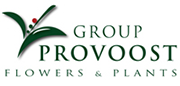 Group Provoost